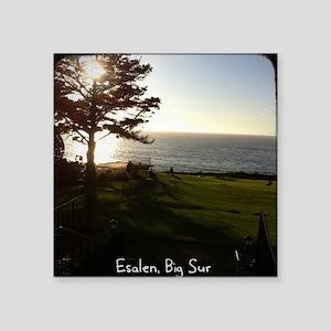 """Front lawn at Esalen, Big Sur Square Sticker 3"""" x"""