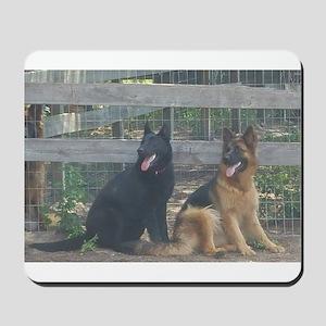 two german shepherds Mousepad