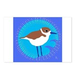 snowy plover Postcards (Package of 8)