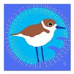 snowy plover Square Car Magnet 3