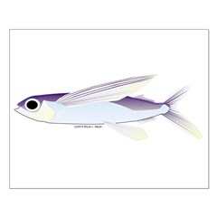 Flying Fish Posters