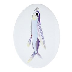 Flying Fish Ornament (Oval)