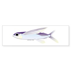 Flying Fish Sticker (Bumper 10 pk)