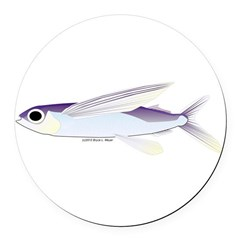 Flying Fish Round Car Magnet