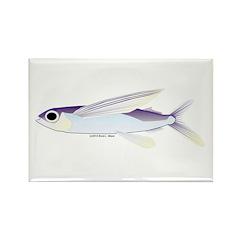 Flying Fish Rectangle Magnet (100 pack)
