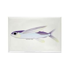 Flying Fish Rectangle Magnet (10 pack)