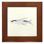 Flying Fish Framed Tile