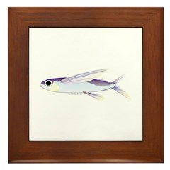 Flying Fish Framed Tile