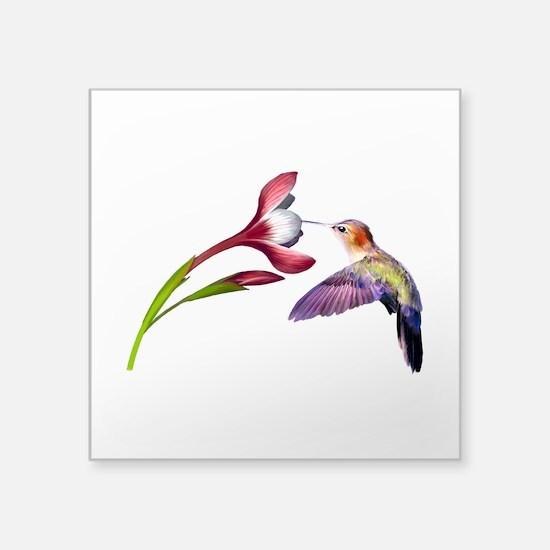"""Hummingbird in flight Square Sticker 3"""" x 3&q"""