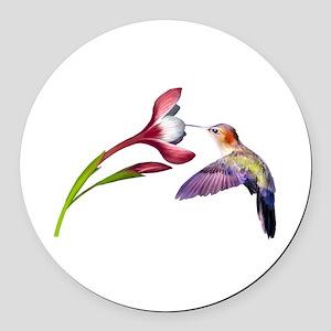 Hummingbird in flight Round Car Magnet
