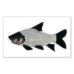 Giant carp barb Sticker (Rectangle 50 pk)
