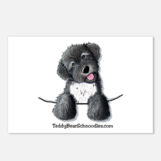 Pocket Black Schnoodle Postcards (Package of 8)