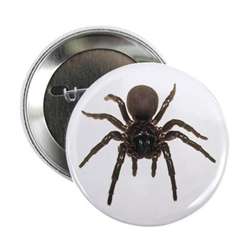 """Funnel Web Spider 2.25"""" Button (100 pack)"""
