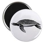 Leatherback Sea Turtle Magnet