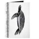 Leatherback Sea Turtle Journal