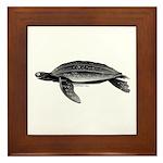 Leatherback Sea Turtle Framed Tile