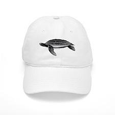 Leatherback Sea Turtle Cap