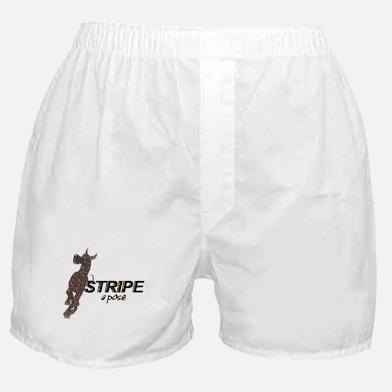 C StripeAPose Boxer Shorts