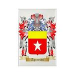 Agneesen Rectangle Magnet (100 pack)