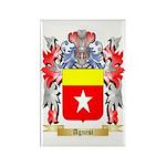 Agnesi Rectangle Magnet (100 pack)