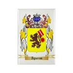 Agueros Rectangle Magnet (100 pack)