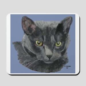 American Shorthair Gray Cat Mousepad