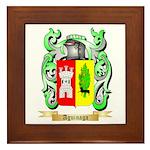 Aguinaga Framed Tile