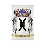 Ahlqvist Rectangle Magnet (100 pack)