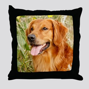 Wiley 2012 Throw Pillow