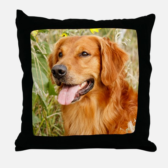 Wiley 2012 Throw Pillow