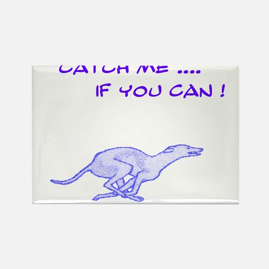 Catch me if you can Greyhound Rectangle Magnet