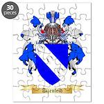 Aizenfeld Puzzle