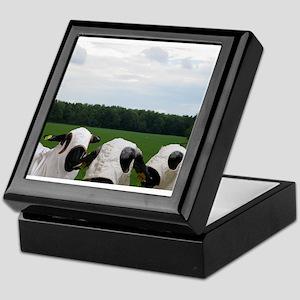 Super Hero Sheep Keepsake Box