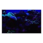 Dark Coral Sticker (Rectangle 10 pk)