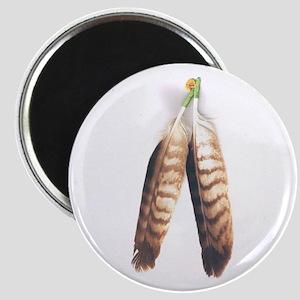 Native Magnet