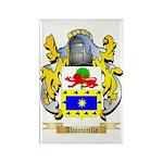 Alcantarilla Rectangle Magnet (10 pack)