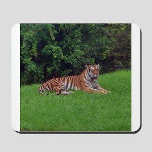 tiger 3 Mousepad