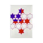 13 Stars of David Rectangle Magnet (10 pack)
