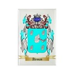 Aleman Rectangle Magnet (100 pack)