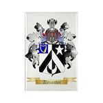 Alexander Rectangle Magnet (10 pack)