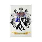 Alexander Rectangle Magnet (100 pack)