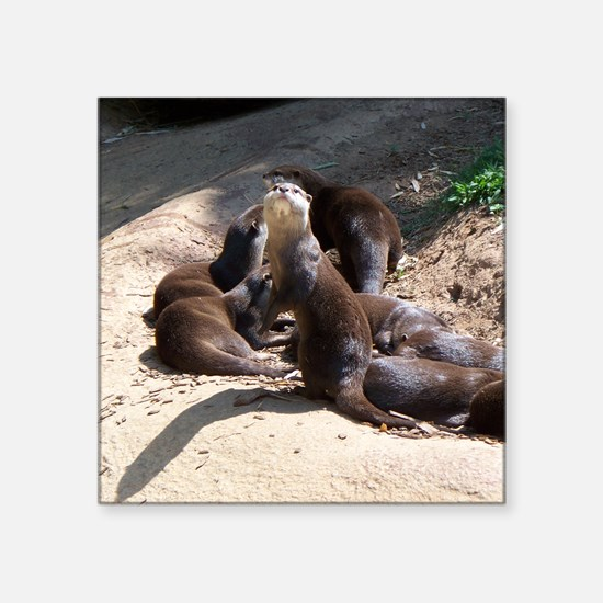 """otters5.png Square Sticker 3"""" x 3"""""""