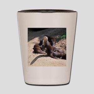 otters5 Shot Glass