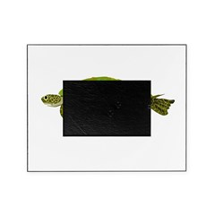 Green Sea Turtle Picture Frame