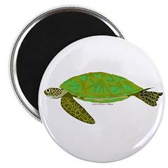 Green Sea Turtle 2.25