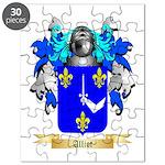 Alliot Puzzle