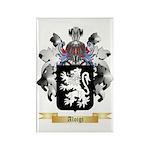 Aloigi Rectangle Magnet (100 pack)