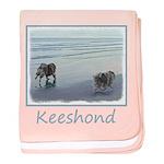 Keeshonds at the Seashore baby blanket