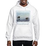 Keeshonds at the Seashore Hooded Sweatshirt