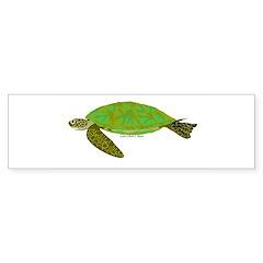 Green Sea Turtle Sticker (Bumper 10 pk)